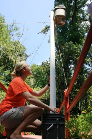 Auburn University graduate student Lydia Moore checks one of six containers set around Magnolia Gardens, each of which holds an electronic bat detector. Photo by Herb Fraizer.